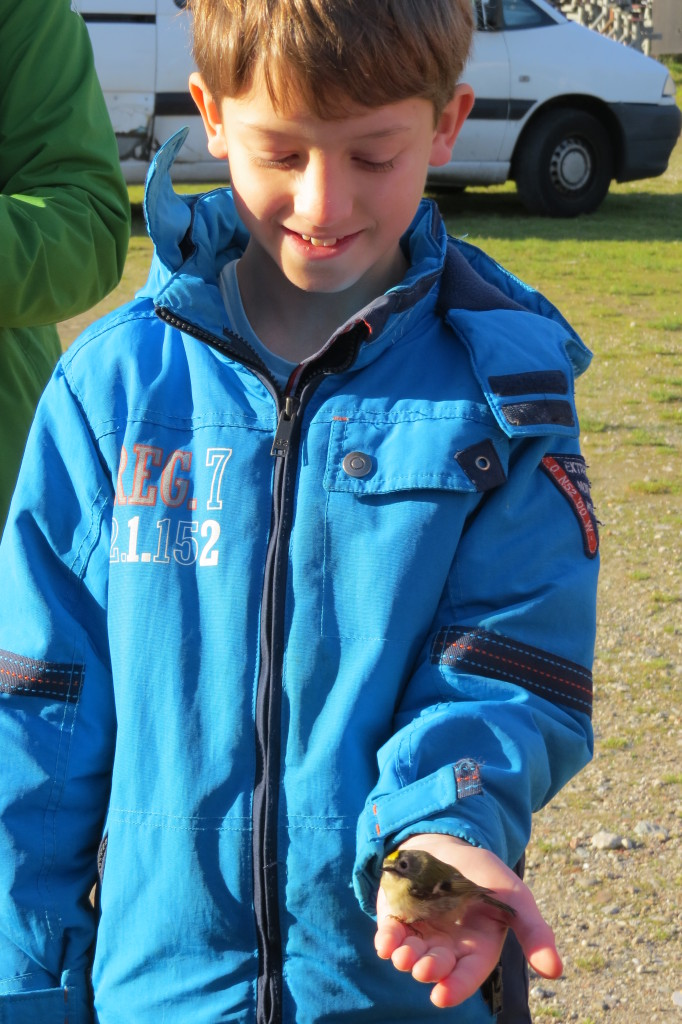 022. t-m jeugdvogelexcursie Ringstation 11 okt 2015 508