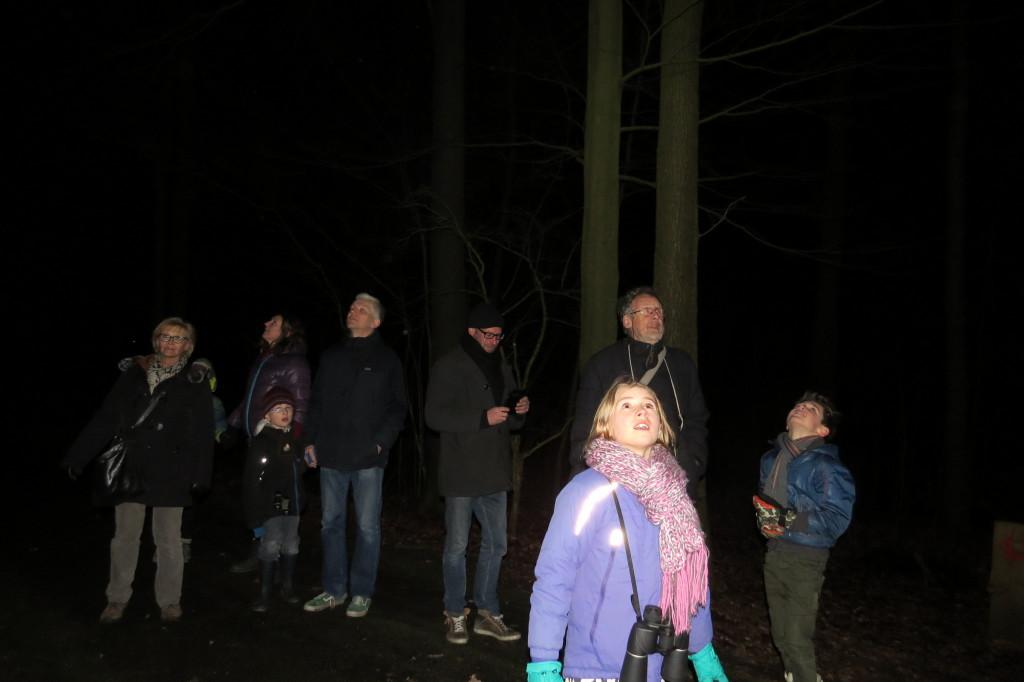 1. extra jeugdexcursie bosuilen luisteren 19-2-2016 047